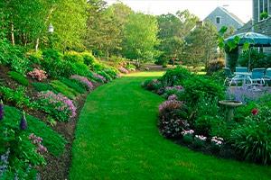 jardineria en sevilla