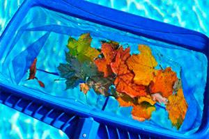 limpieza y desinfección de piscinas en sevilla y huelva